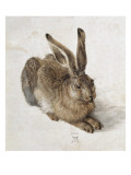 Hare Reproduction proc&#233;d&#233; gicl&#233;e par Albrecht D&#252;rer