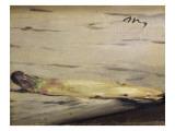Asparagus (L'Asperge) Posters by Édouard Manet