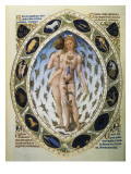 The Richly Decorated Hours of the Duke of Berry: the Anatomical Man Print by Jean Limbourg