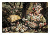 The Spring Gicle-tryk af Giuseppe Arcimboldo