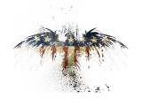 Eagles Become Giclee Print by Alex Cherry