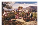 The Grape Harvest Posters by Ricard Marti y Aguilo