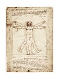 Vitruvian Man Giclee Print by Leonardo da Vinci 
