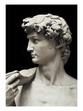 David Giclée-Premiumdruck von  Michelangelo