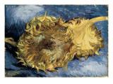 Girasoles Lámina giclée por Vincent van Gogh