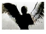 Favner himlen Giclee-tryk i høj kvalitet af Alex Cherry
