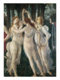The Spring Premium Giclee Print by Sandro Botticelli