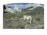 Meadows in Spring Prints by Giovanni Segantini