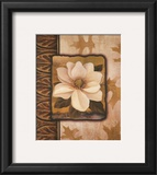 White Gardenia Prints by T. C. Chiu