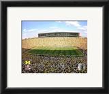 Michigan Stadium University of Michigan Wolverines 2009 Framed Photographic Print