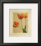 Tangerine Tulips II Prints by Linda Maron
