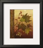 Maple Leaves Posters by Jillian Jeffrey