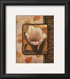 White Tulip Poster by T. C. Chiu