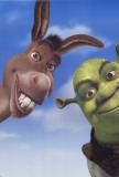Shrek2– Der tollkühne Held kehrt zurück Masterdruck