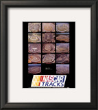 Nascar Tracks Prints by Mike Smith