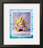Baby YellowFish Posters by Tom Arma