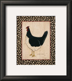 White Bellied Chicken Prints by Warren Kimble