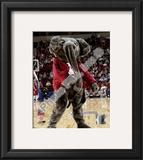 University of Alabama Framed Photographic Print