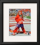 Clemson University Tigers Mascot Framed Photographic Print