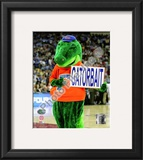 University of Florida Framed Photographic Print