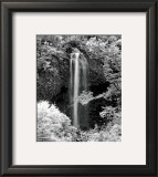 Nature's Jewel I Prints by Mike Jones