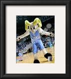 University of North Carolina Framed Photographic Print