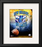 2009 New Orleans Hornets Framed Photographic Print