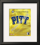 University of Pittsburgh Panthers 2008 Logo Framed Photographic Print