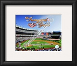 2009 Yankee Stadium Inaugural Season Framed Photographic Print