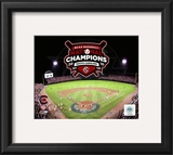 University of South Carolina 2010 NCAA College Baseball World Series Champions Framed Photographic Print