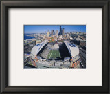Seattle Seahawks- Quest Field Prints