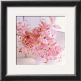 Powder Pink Prints