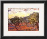 The Olive Grove, c.1889 Prints by Vincent van Gogh