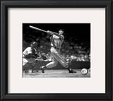 Ted Williams - Batting (sepia) Framed Photographic Print