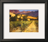 Wine Country Prints by Philip Craig