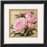 Pretty in Pink Peonies Print by Igor Levashov