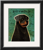Rottweiler Posters by John Golden