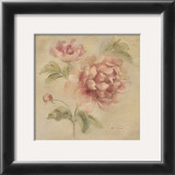 Coral Rose on Antique Linen Prints by Cheri Blum
