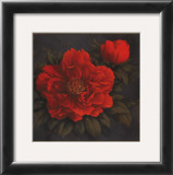 Red Carnation with Border I Prints by T. C. Chiu
