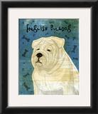 English Bulldog Prints by John Golden