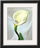 Calla Lily Turned Away, 1923 Posters by Georgia O&#39;Keeffe