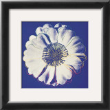 Flower for Tacoma Dome, c.1982 (Blue and White) Art by Andy Warhol