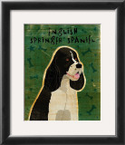 English Springer Spaniel (black and white) Prints by John Golden