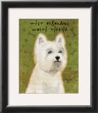 West Highland White Terrier Art by John Golden