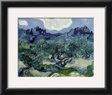 Landscape with Olive Trees Art by Vincent van Gogh