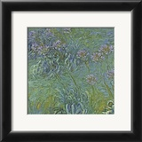 Jewelry Lilies Poster by Claude Monet
