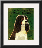 Cavalier King Charles (tri-color) Prints by John Golden