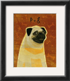 Pug Posters by John Golden