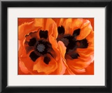 Oriental Poppies Art by Georgia O'Keeffe