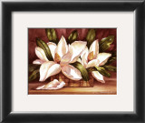 Blossoming Magnolias Print by Peggy Thatch Sibley
